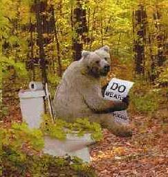 Bear-on-toilet